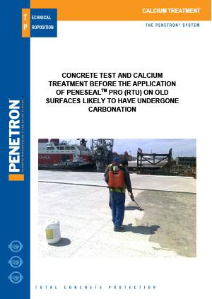 Peneseal Pro Calcium Treatment